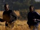 Quenianos iniciam preparação para São Silvestre 6 meses antes da prova
