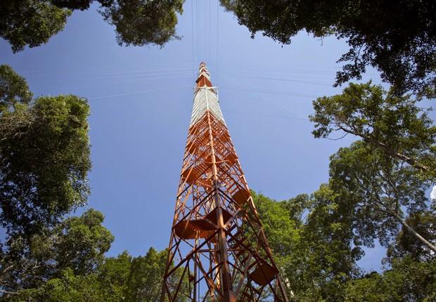 Observatório da Torre Alta da Amazônia (Foto: Divulgação/Ascom)