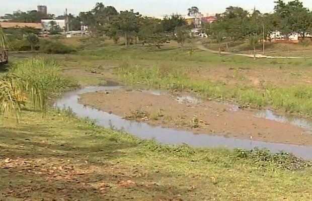Lago do Parque Casvel sofre com assoreação e derramamento de esgotom em Goiânia, Goiás (Foto: Reprodução/TV Anhanguera)