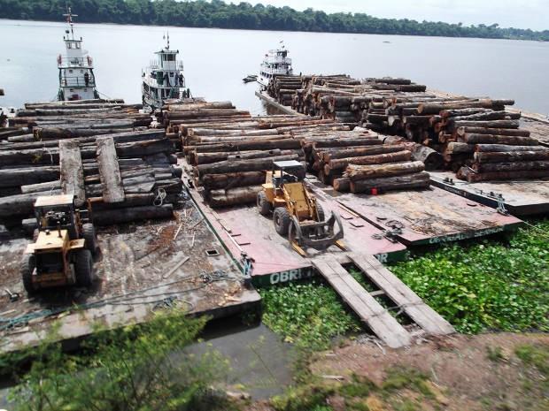 Apreensão ocorreu no Rio Pacajá e seus afluentes, Mandaguari e Aruanã, na altura de Portel. (Foto: Divulgação/ Ibama)