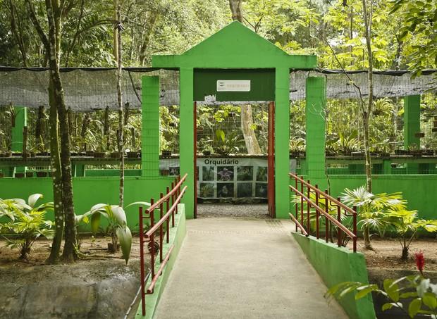 Jardim Botânico (Foto: Andréa Rêgo Barros)