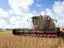 Evento de abertura da colheita de soja será dia 29 em Alto Garças (MT)