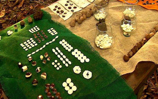 Botões são feitos de várias sementes da Amazônia (Foto: Amazônia Revista Acre)