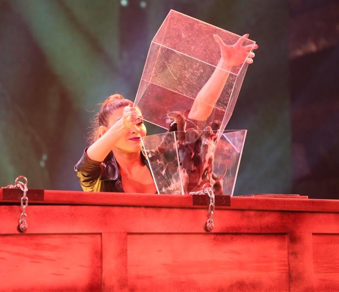 Diversos ratos foram colocados na caixa em que Ludmilla estava presa (Foto: Carol Caminha/Gshow)