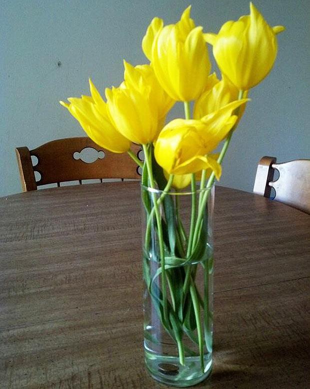 10-moeda-no-vaso-de-flores (Foto: Reprodução/Pinterest)