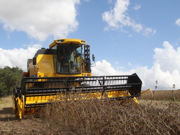 Safra recorde de grãos ajudou o estado a conseguir resultados positivos (Foto: Jonas Oliveira/AEn/Divulgação)