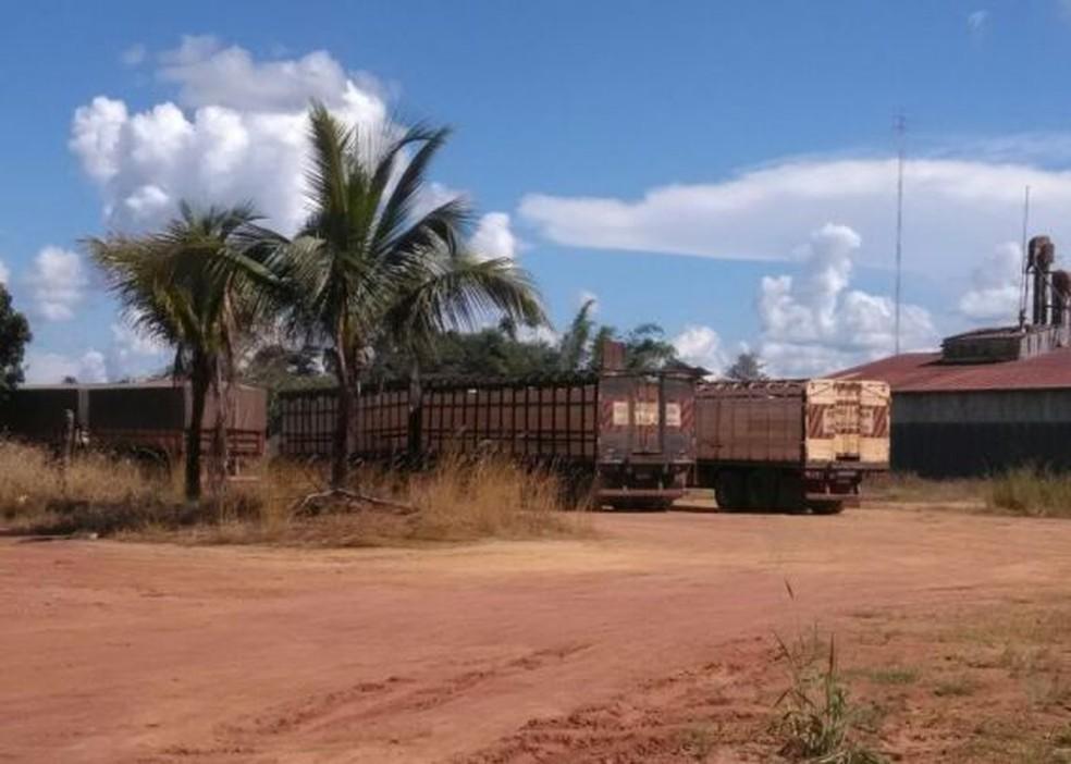 Boi escapou de caminhão em rua de Rolim de Moura (Foto: Alerta Rolim/Reprodução)
