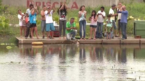 Moradores aplaudem Vitória voltando à natureza (Foto: Reprodução/TV Tribuna)