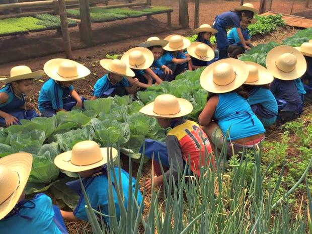 Crianças participam da plantação ao cultivo com captação de água da chuva (Foto: Graziela Rezende/G1 MS)