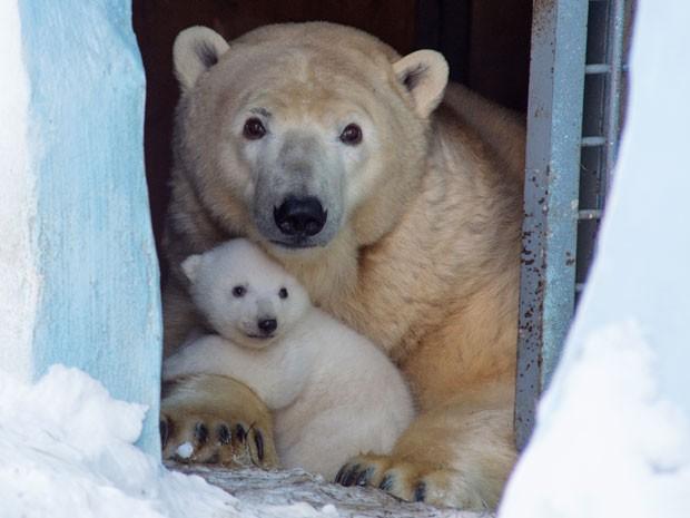 Gerda com o filhote (Fot Ilnar Salakhiev/AP)