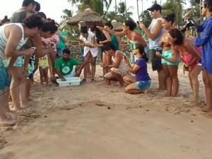 Instituto Biota de Conservação promoveu a soltura das tartaruguinhas (Foto: Lucas Leite/ G1)