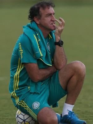 BLOG: Palmeiras deverá focar no Brasileirão para chegar ao título
