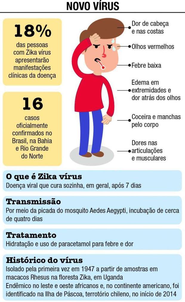 arte zika vírus (Foto: Arte/ Samp)