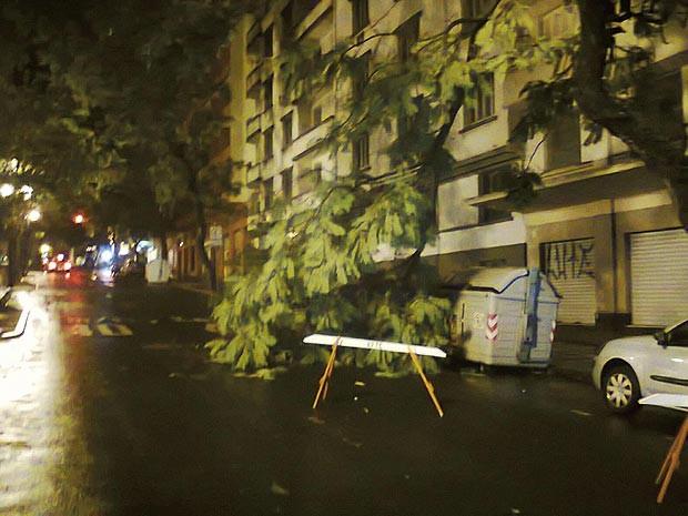 Parte de árvore caiu na Avenida Borges de Medeiros, Centro de Porto Alegre (Foto: João Laudi/RBS TV)