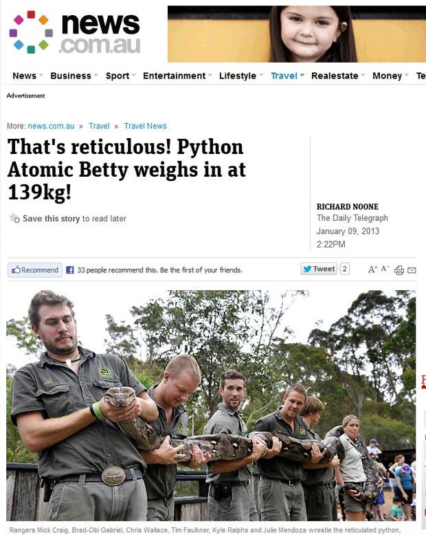 Pesagem da píton-reticulada de 6,5 metros precisou da ajuda de seis pessoas (Foto: Reprodução)