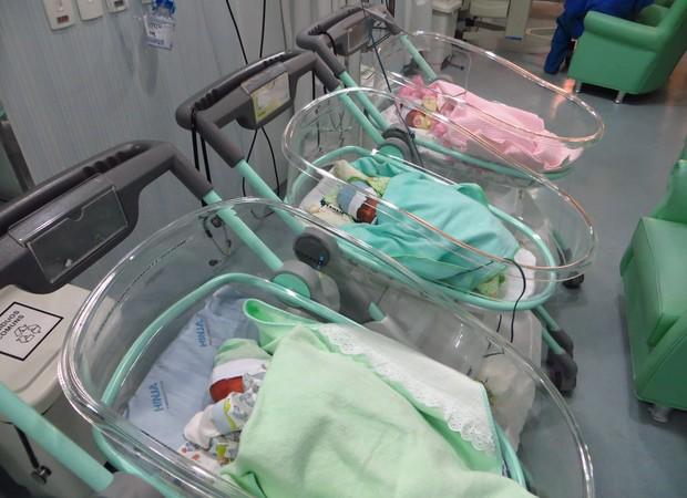 Sugestão de legenda: Na UTI, às vésperas da alta hospitalar (Foto: Arquivo Pessoal/ Paola Lobo)
