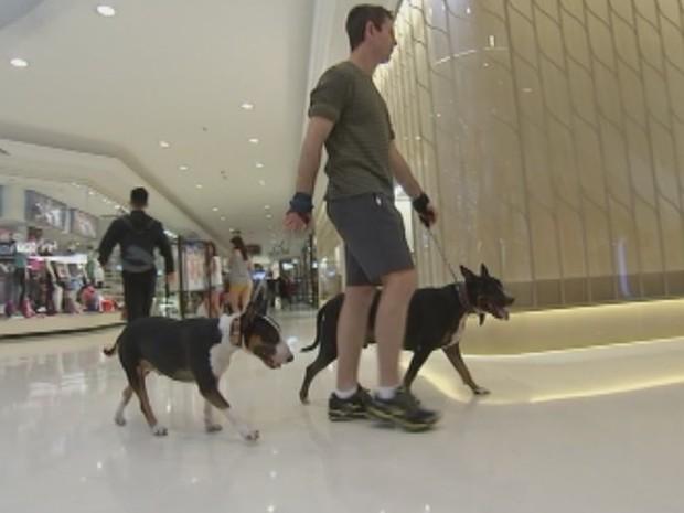 Shoppings passaram a oferecer estrutura para entrada de animais  (Foto: Reprodução / TV TEM)