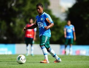 Mazinho Palmeiras (Foto: Marcos Ribolli / Globoesporte.com)