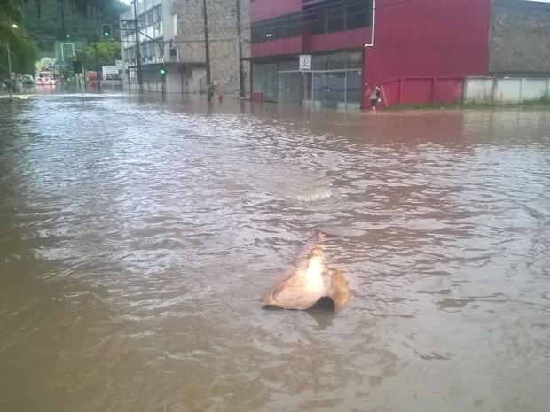 Chuva causa alagamentos em Joinville (Foto: Douglas Rodrigo/ RBS TV)