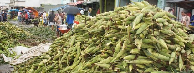 Milho vendido na Feira Central de Campina Grande, Paraíba (Foto: Inaê Teles/G1)