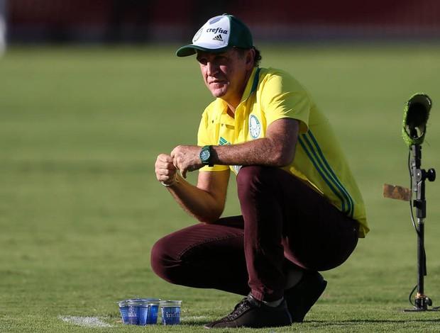 BLOG: Palmeiras aposta novamente em Cuca