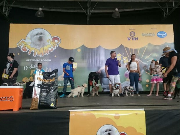 Todos os cães subiram ao palco do Estimacão e foram avaliados por jurados (Foto: Ana Paula Yabiku/G1)