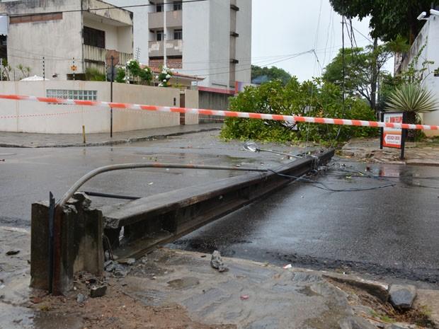 Árvore caiu e derrubou poste no bairro de Manaíra, em João Pessoa (Foto: Walter Paparazzo/G1)