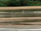 Lama no Rio Doce: após 8 meses, qualidade da água é questionada