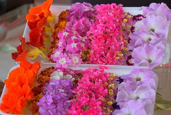 Dá pra acreditar que estas lindezas são pra comer? (Foto: De Ponta a Ponta / TV TEM)