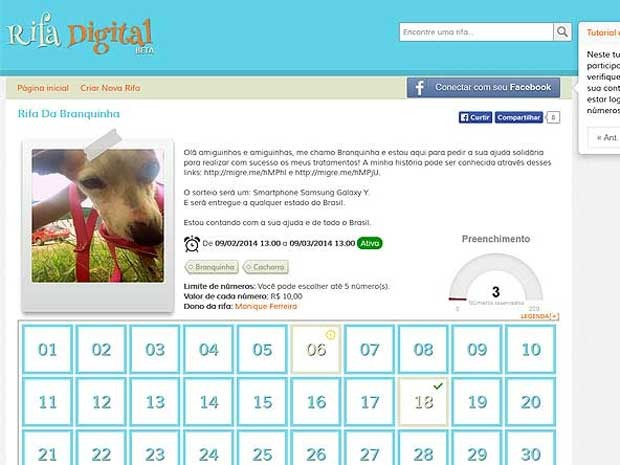 Imagem da página em que ocorre rifa virtual para ajudar cadela Branquinha, resgatada de cemitério do DF (Foto: Reprodução)