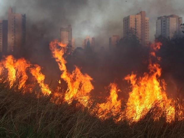 Maranhão foi o segundo estado do país que mais registrou focos de incêndio nesta sexta-feira (2) (Foto: Douglas Jr / O Estado)