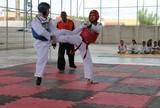 Taekwondo: Acre não participa de torneio em RO e Liga abre inscrições