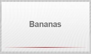 Entrevista - bananas (Foto: G1)