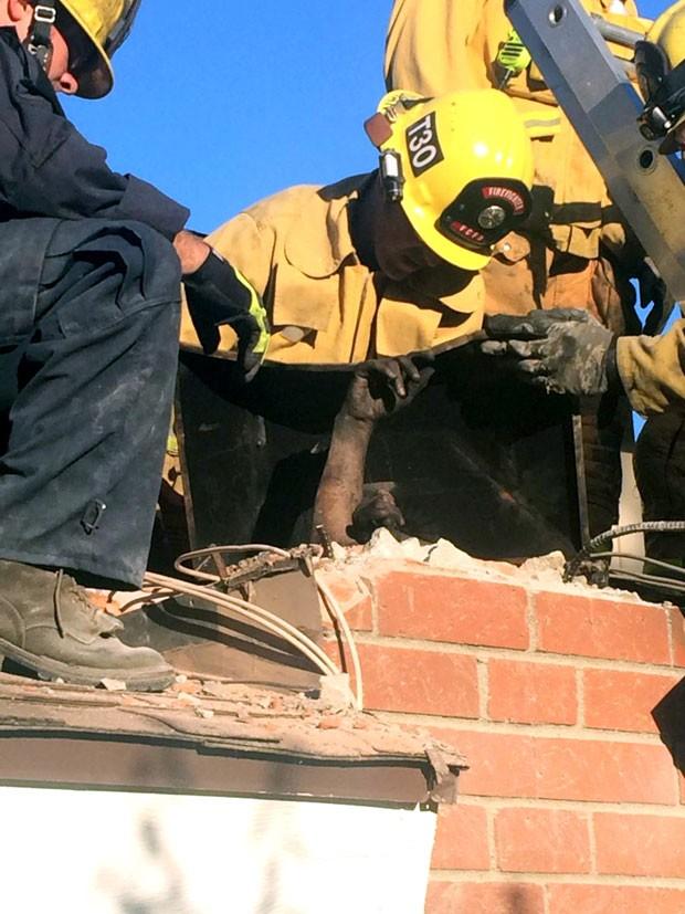Bombeiros usaram sabão líquido para conseguir remover a mulher (Foto: Ventura County Fire Department/AP)