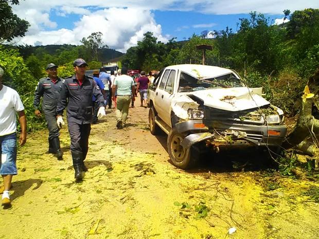 Queda da árvore deixou o carro destruído (Foto: Adenilson Geraldo/Arquivo pessoal)