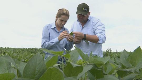TI e engenharia agronômica serão áreas de destaque em 2017