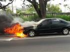 Carro pega fogo na BR-393, em Volta Redonda, RJ