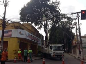Ao todo, dois caminhões como esse estão sendo utilizados no trabalho (Foto: Derek Gustavo/G1)