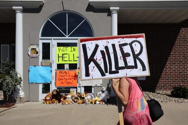 Manifestantes carregam cartazes diante da clínica dentária River Bluff em Bloomington, no estado do Minnesota (EUA), onde trabalharia o dentista Walter Palmer. Ele foi identificado como o caçador que matou o leão Cecil, animal símbolo do Zimbábue (Foto: Adam Bettcher/Getty Images)