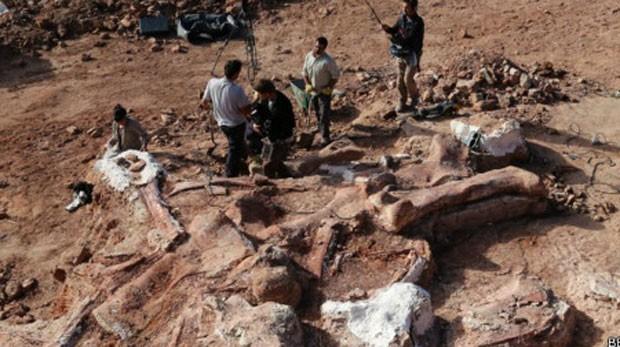 Fósseis são de 100 milhões de anos atrás (Foto: BBC)