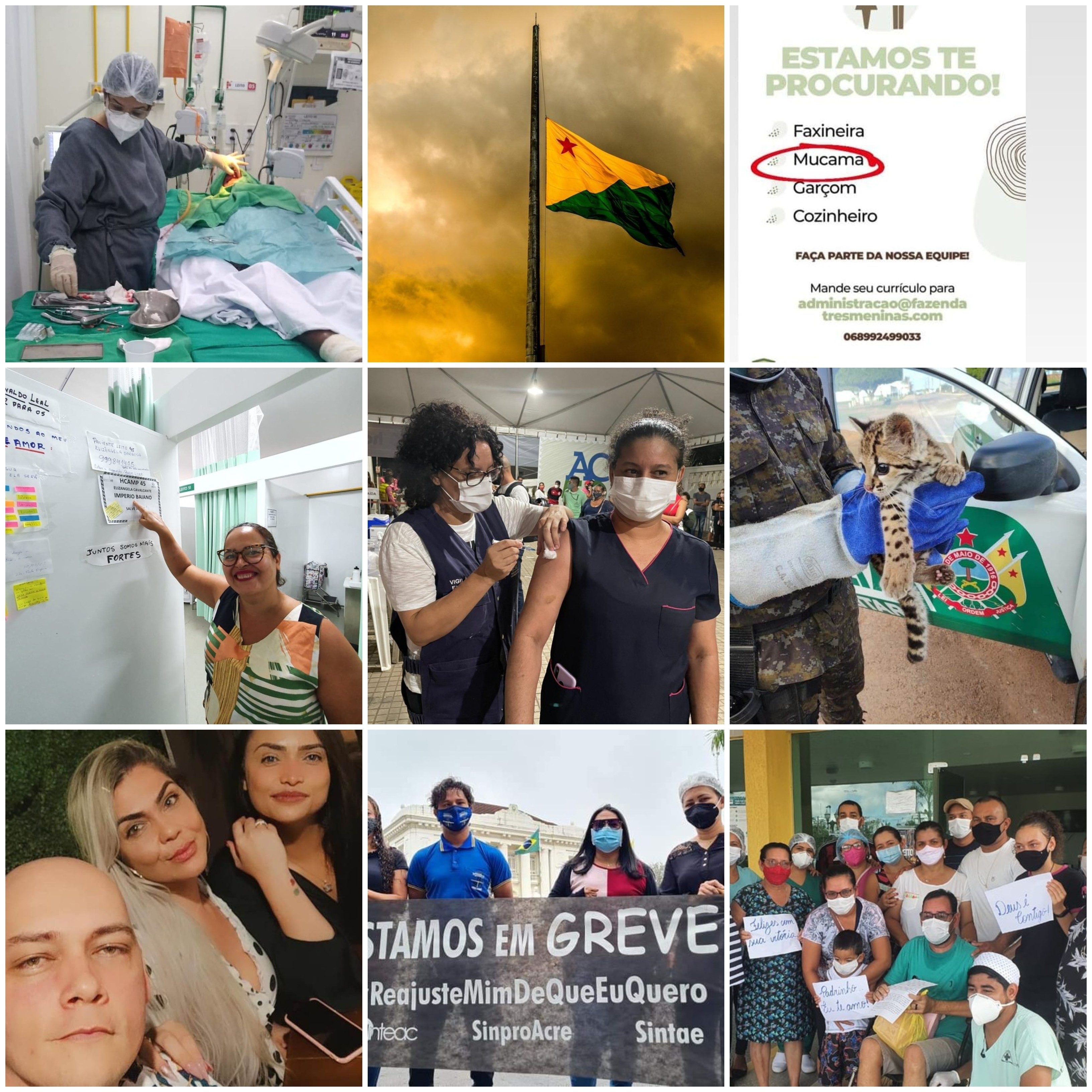 Você viu? Hotel abre vaga para 'mucama', mutirão, 59 anos do Acre, protesto Bolsonaro, vacina Bau e mais