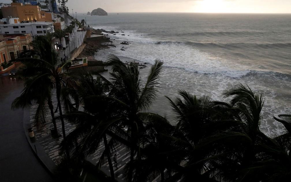 Palmeiras se agitam com os ventos provocados pela aproximação do furacão Willa em Mazatlan, no México, na terça-feira (23) — Foto: Reuters/Henry Romero