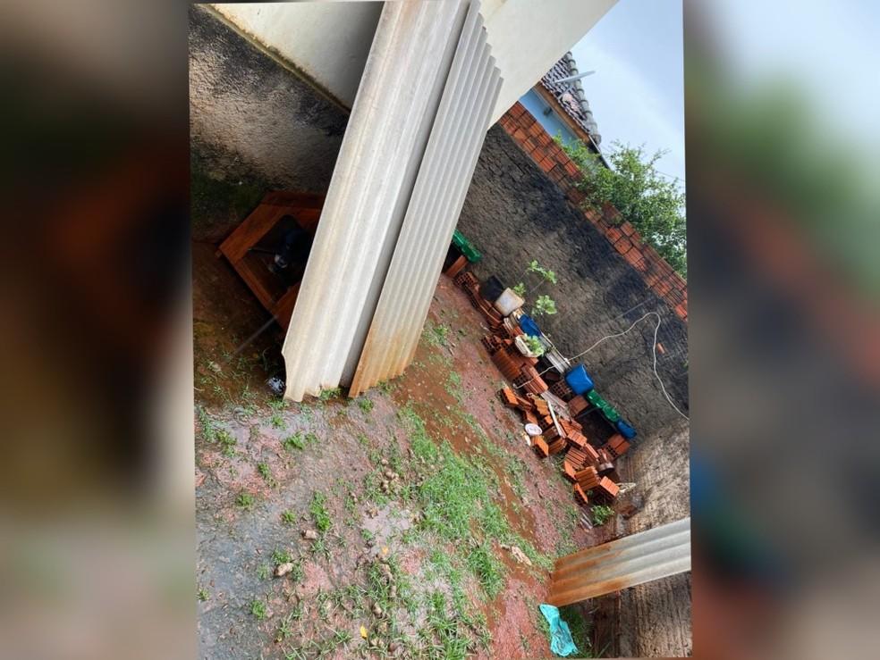 Cachorro foi encontrado em situação de maus-tratos em Itararé — Foto: ASCOM Prefeitura de Itararé/Divulgação