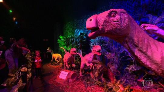 Diversão e Arte com Ana Carolina, Sururu na Roda e, para as crinças, dinossauros e dragões