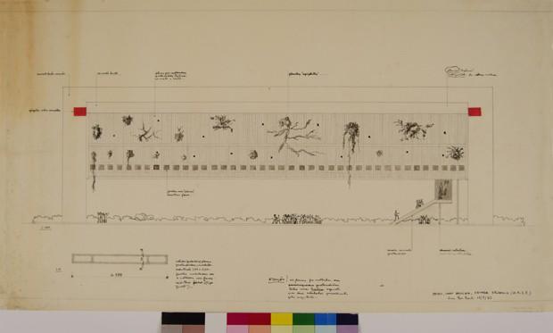 Casa de Vidro recebe mostra sobre os 50 anos do prédio do MASP  (Foto: Reprodução)