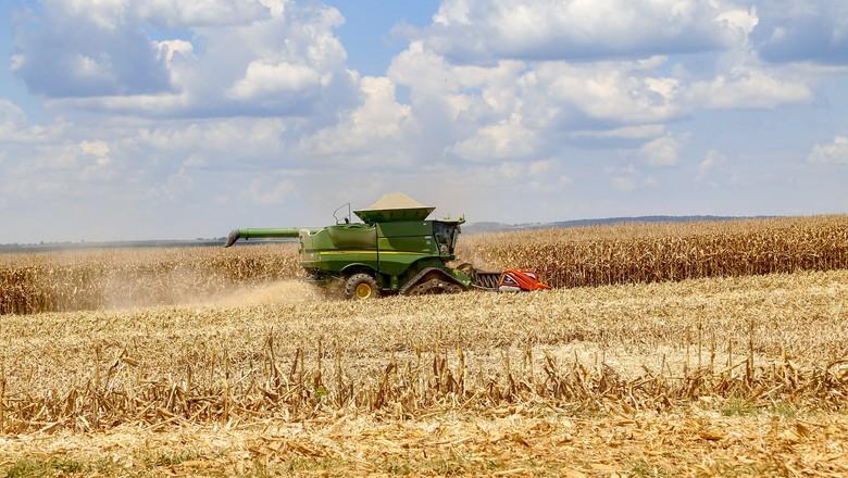Colheita de milho em lavouras do Paraná (Foto: Secretaria de Agricultura do Paraná/Divulgação)