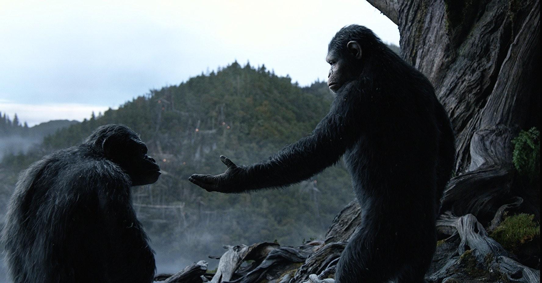 """""""Planeta dos Macacos: O Confronto"""" (2014) (Foto: Twentieth Century Fox Film Corporation/Divulgação)"""