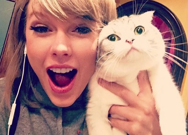 Taylor Swift e sua gata Olivia (Foto: Reprodução)