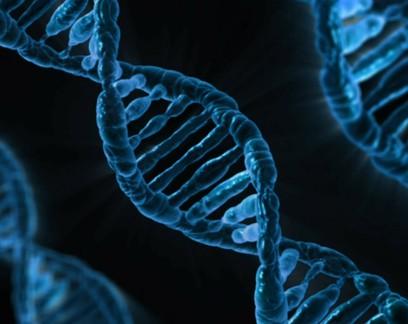 """Pesquisa associa """"gene da demência"""" a risco de quadro grave de Covid-19"""