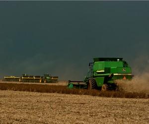Com atraso, colheita de soja em Mato Grosso chega a 67,2% da área